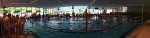 Stadtmeisterschaft Schwimmen17